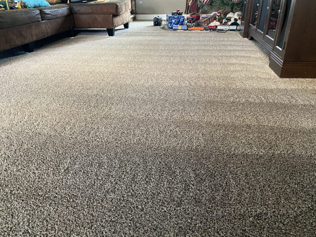 Carpet Cleaning Services Orange County